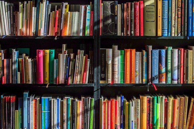 libros mineduc